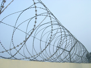 Concertina Wire in Lagos from Bisi-Best Nigeria Limited